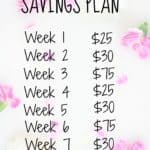 Summer Travel Savings Plan